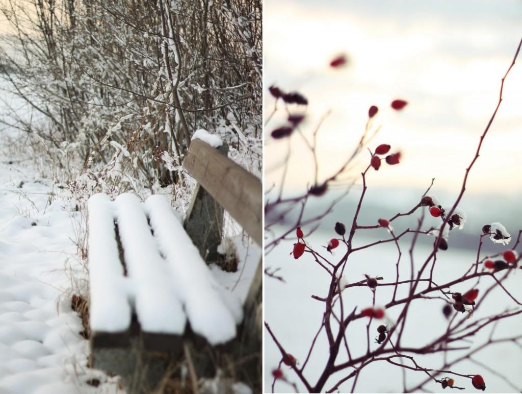winter und weihnachtszeit